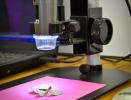 emporio_agricolo_lecco_microscopio_1